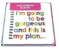 lark notebook