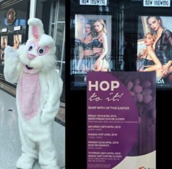 HB_bunny